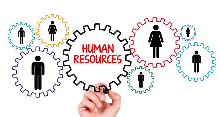 نقش اساسی منابع انسانی در انجام فعالیت ها و پیشبرد اهداف یک سازمان